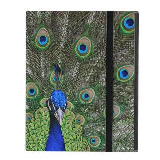 Peacock iPad Cover