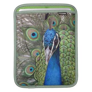 Peacock iPad Sleeve
