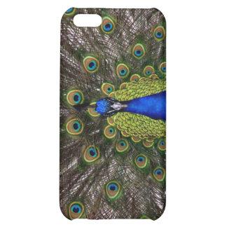 peacock iPhone 5C cases