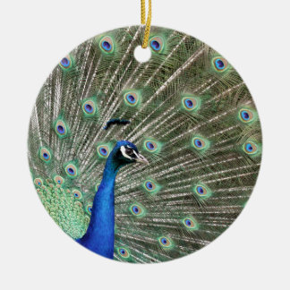 peacock.jpg ceramic ornament