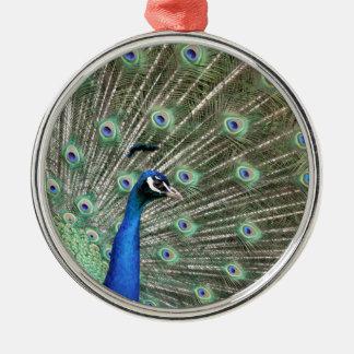 peacock.jpg metal ornament
