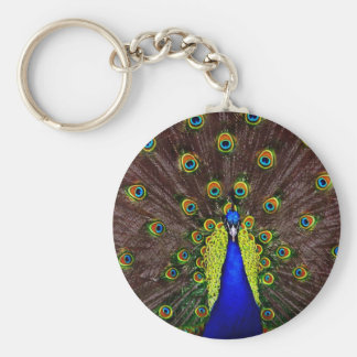 Peacock Key Chains