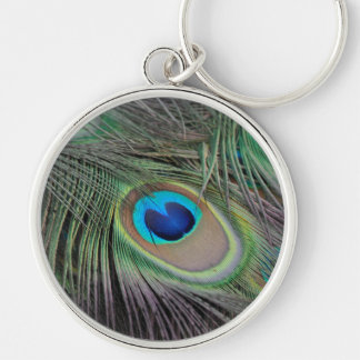 Peacock Key Chains