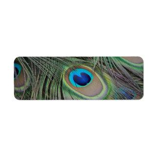 Peacock Custom Return Address Labels