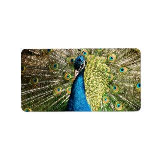 Peacock Address Label