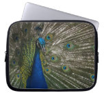 Peacock Laptop Cover Computer Sleeves