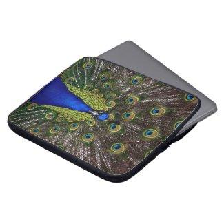 Peacock Laptop Sleeves