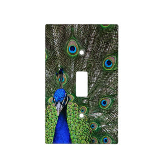 Peacock Light Switch Cover