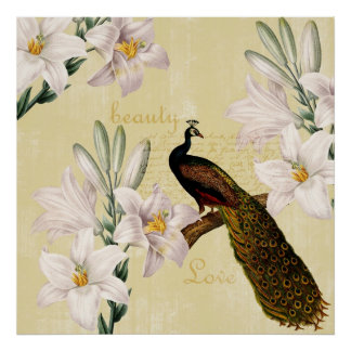 Peacock Lilies Posters