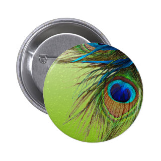 Peacock Lime Magic 2 Inch Round Button