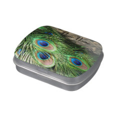 Peacock Little Box Candy Tin at Zazzle