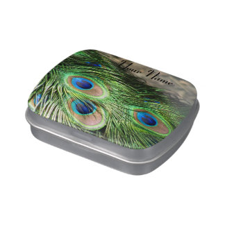 Peacock Little Box Candy Tin