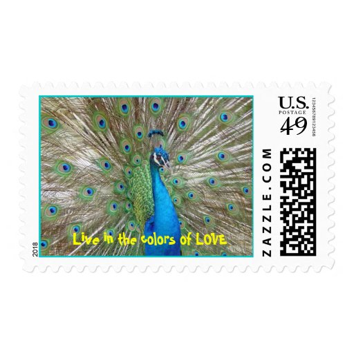 peacock love - Customized Stamps