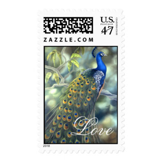 Peacock Love Stamp
