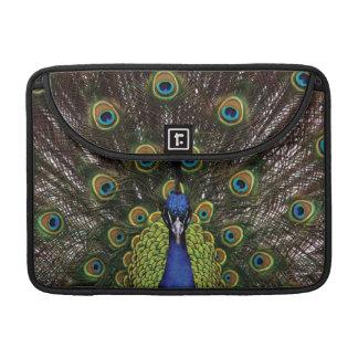Peacock MacBook Pro Sleeve