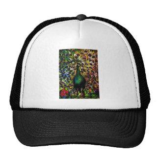 Peacock Majestic Trucker Hat