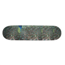 Peacock male in full fan photograph skateboard deck
