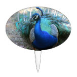 Peacock male on ground head turned left oval cake topper