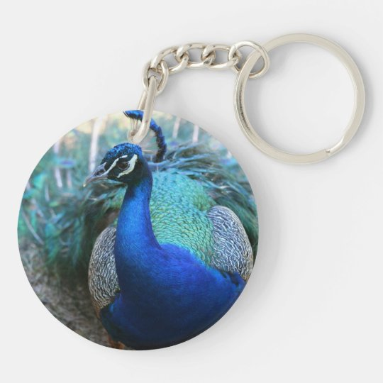 Peacock male on ground head turned left keychain