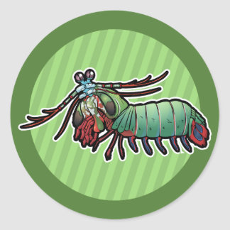 Peacock Mantis Shrimp Classic Round Sticker