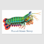 Peacock Mantis Shrimp Reef Creature Sticker