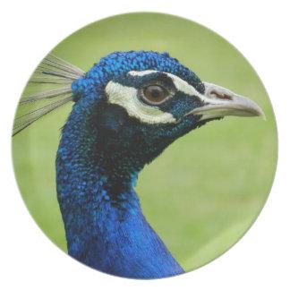 Peacock Melamine Plate