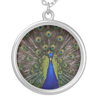 Peacock Necklace