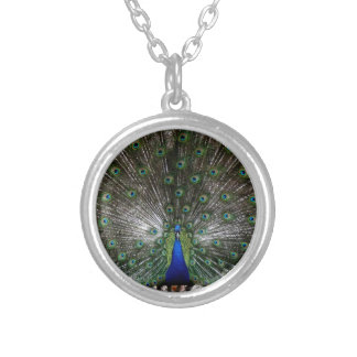 Peacock necklace gifts Imaginative Imagery gift