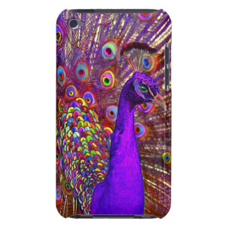 Peacock Of A Million Colors iPod Touch Covers