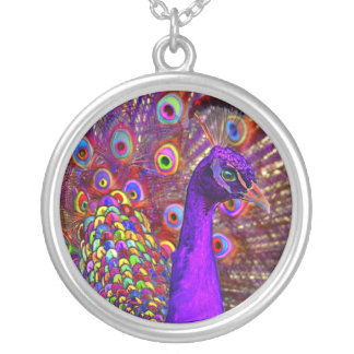 Peacock Of A Million Colors Round Pendant Necklace