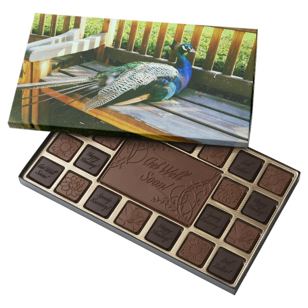 Peacock on the bench 45 piece box of chocolates