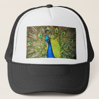 peacock Open beauty and love for you Trucker Hat