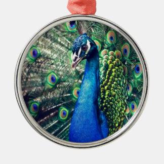 peacock ornament
