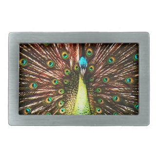 Peacock Painting Belt Buckle