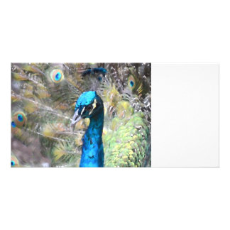 peacock painting look left side head photo card
