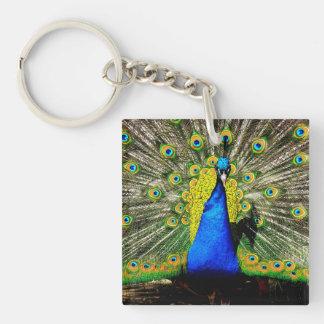Peacock Paradise Keychain