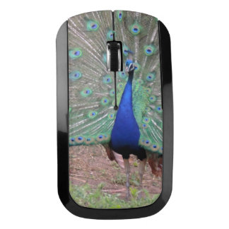 Peacock Paradise Wireless Mouse