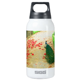 Peacock path near a castle in northern Portugal. SIGG Thermo 0.3L Insulated Bottle