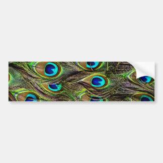 peacock pattern car bumper sticker