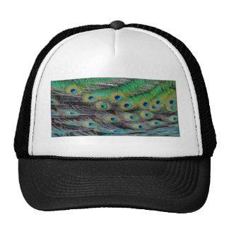 Peacock Pattern I Hat