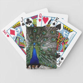 Peacock Peafowl colorful playingcards gifts Bicycle Playing Cards
