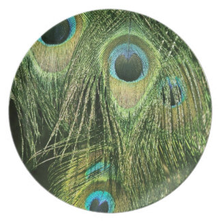 Peacock/Peafowl Feathers Plate