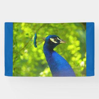 Peacock (Pfau) Banner