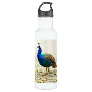 Peacock Photo 24oz Water Bottle