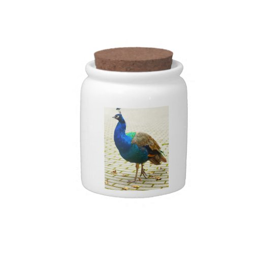 Peacock Photo Candy Jars