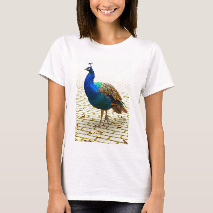 Peacock Photo T-Shirt
