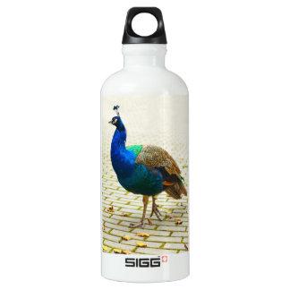 Peacock Photo Water Bottle