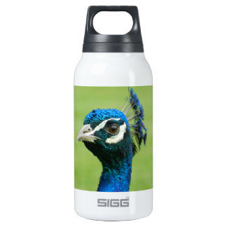 Peacock Photograph Insulated Water Bottle