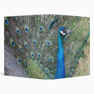 Peacock Photography 3 Ring Binder