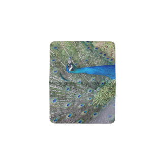 Peacock Photography Business Card Holder